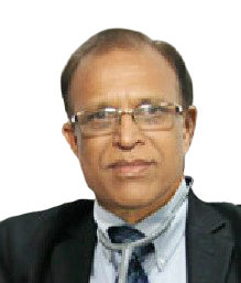 Dr Dattatray Saple